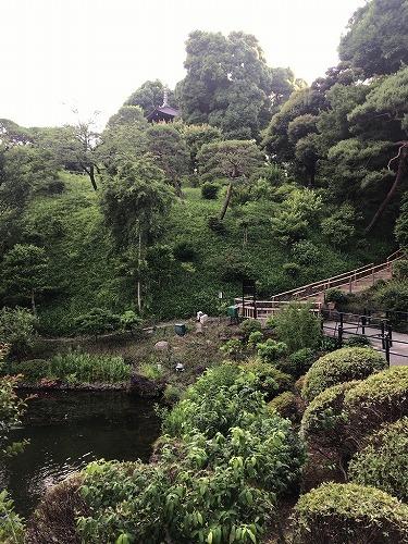f:id:tomoko-air-tokyo:20190130102220j:plain