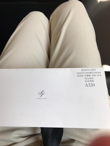 f:id:tomoko-air-tokyo:20190130103541j:plain