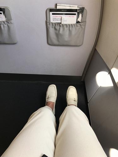 f:id:tomoko-air-tokyo:20190130103640j:plain