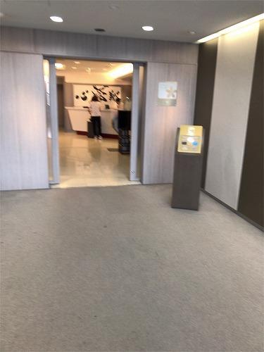 f:id:tomoko-air-tokyo:20190131130821j:plain