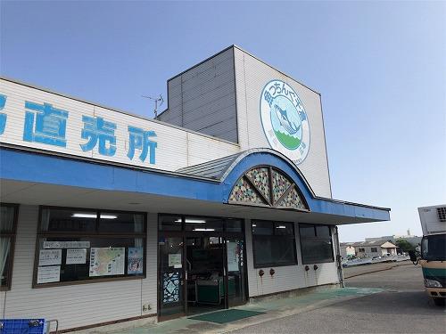 f:id:tomoko-air-tokyo:20190131161534j:plain
