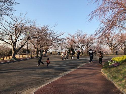 f:id:tomoko-air-tokyo:20190208121539j:plain