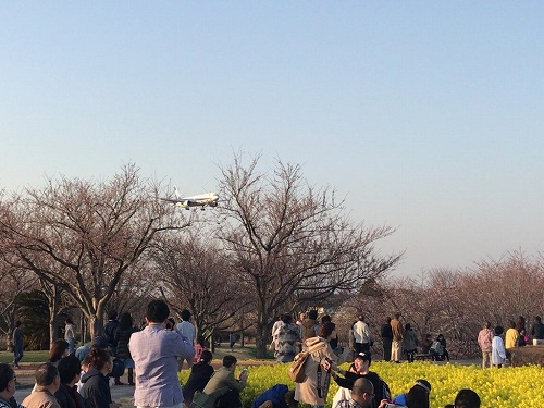 f:id:tomoko-air-tokyo:20190208121542j:plain