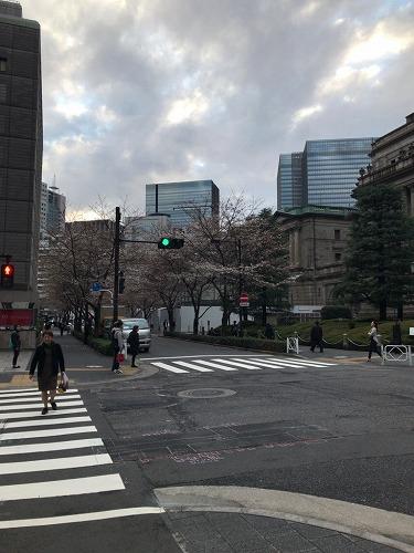 f:id:tomoko-air-tokyo:20190208121756j:plain