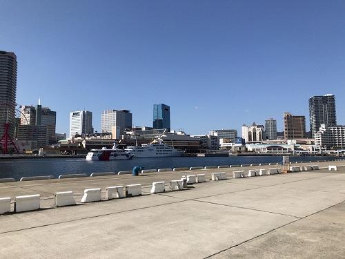 f:id:tomoko-air-tokyo:20190212102432j:plain