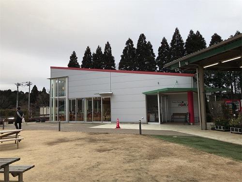 f:id:tomoko-air-tokyo:20190212104202j:plain