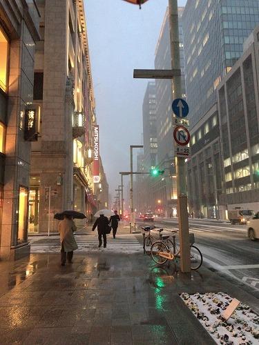 f:id:tomoko-air-tokyo:20190213105037j:plain