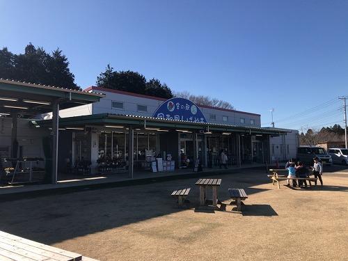 f:id:tomoko-air-tokyo:20190214105207j:plain
