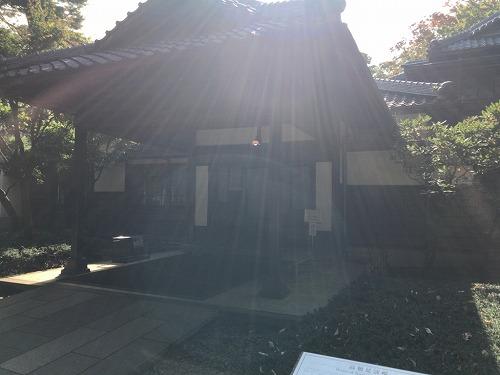 f:id:tomoko-air-tokyo:20190214110203j:plain
