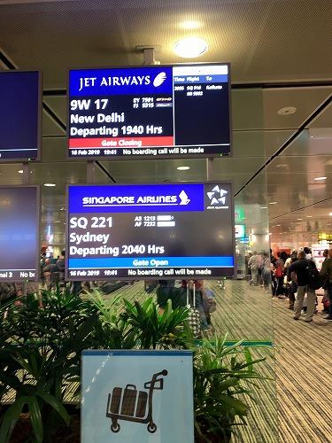 f:id:tomoko-air-tokyo:20190226144902j:plain