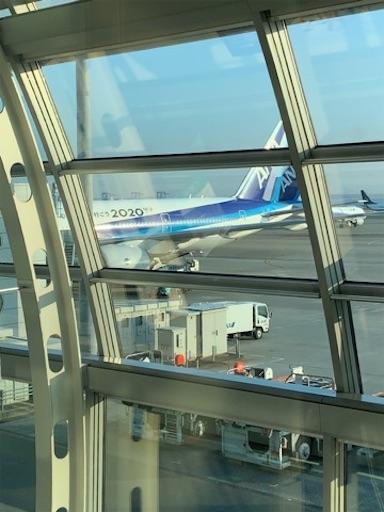 f:id:tomoko-air-tokyo:20190302071310j:image