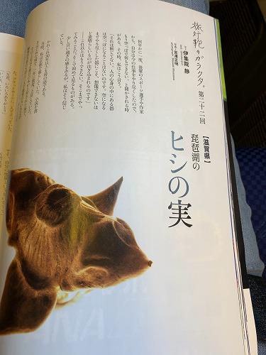 f:id:tomoko-air-tokyo:20190405084314j:plain
