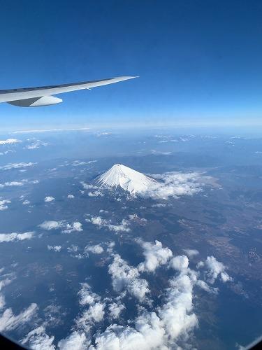 f:id:tomoko-air-tokyo:20190405084413j:plain