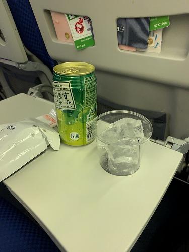 f:id:tomoko-air-tokyo:20190405085140j:plain