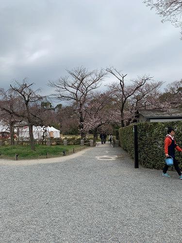 f:id:tomoko-air-tokyo:20190412090248j:plain