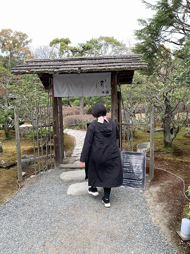 f:id:tomoko-air-tokyo:20190412090500j:plain
