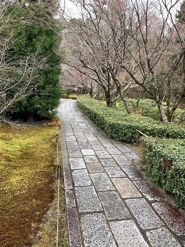 f:id:tomoko-air-tokyo:20190415092209j:plain
