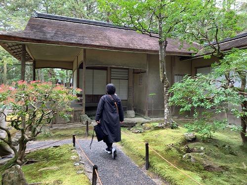 f:id:tomoko-air-tokyo:20190415094548j:plain