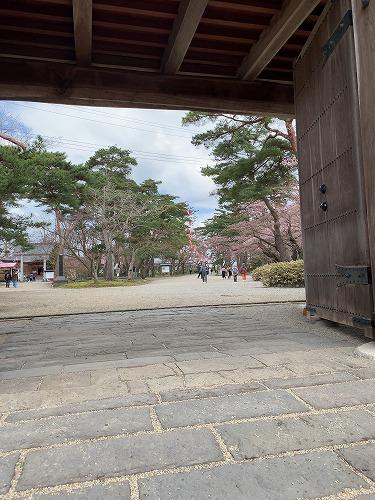 f:id:tomoko-air-tokyo:20190423093251j:plain