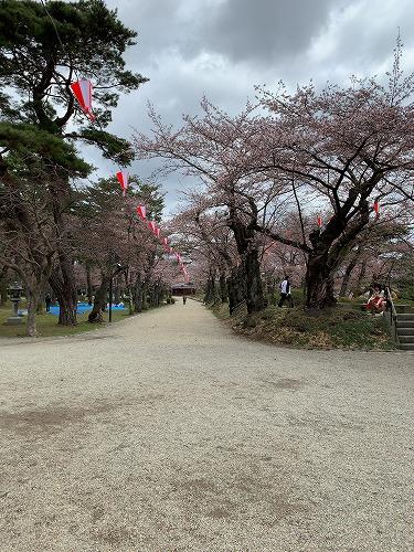 f:id:tomoko-air-tokyo:20190423093305j:plain