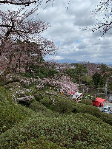 f:id:tomoko-air-tokyo:20190423093337j:plain