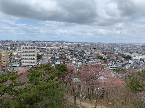 f:id:tomoko-air-tokyo:20190423093450j:plain