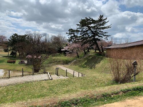 f:id:tomoko-air-tokyo:20190423122513j:plain