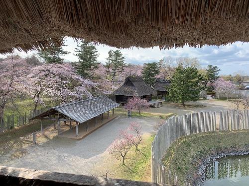 f:id:tomoko-air-tokyo:20190425090024j:plain