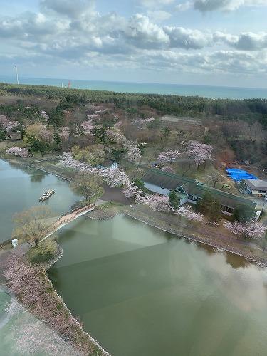 f:id:tomoko-air-tokyo:20190425090115j:plain