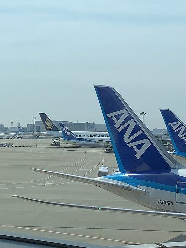 f:id:tomoko-air-tokyo:20190508095432j:plain