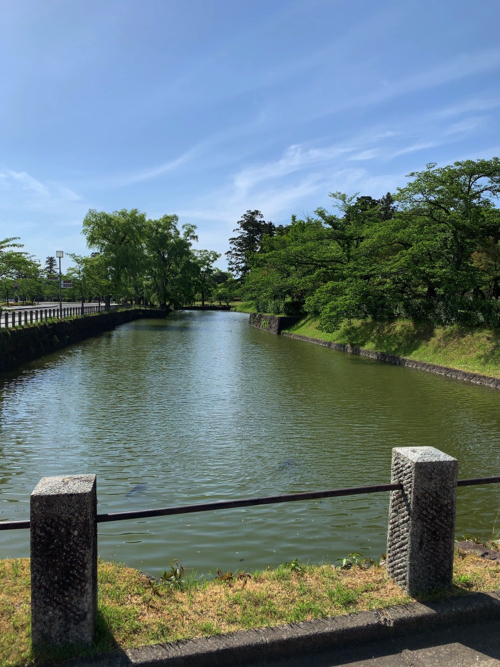 f:id:tomoko-air-tokyo:20190605093708j:plain