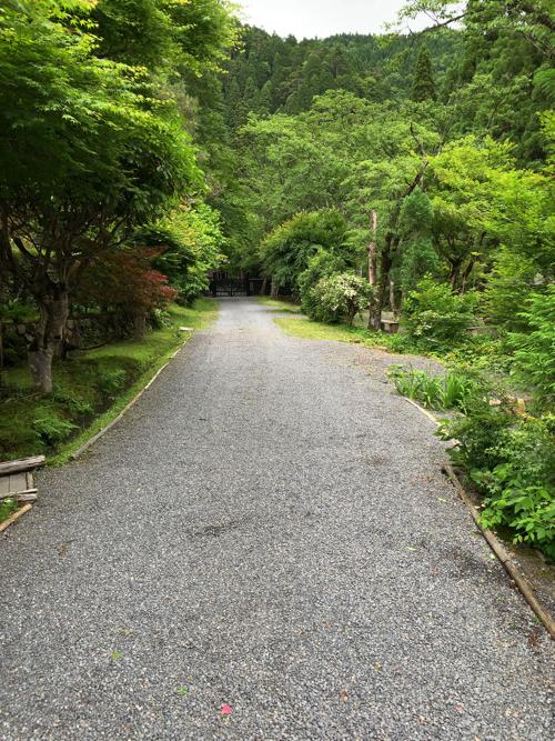 f:id:tomoko-air-tokyo:20190617181609j:plain