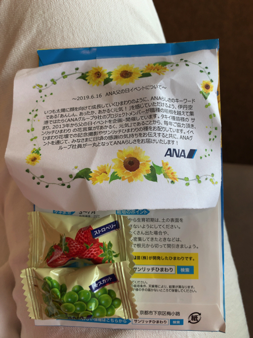 f:id:tomoko-air-tokyo:20190626093149j:plain