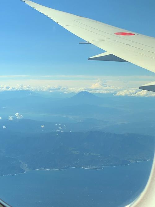 f:id:tomoko-air-tokyo:20190626094029j:plain