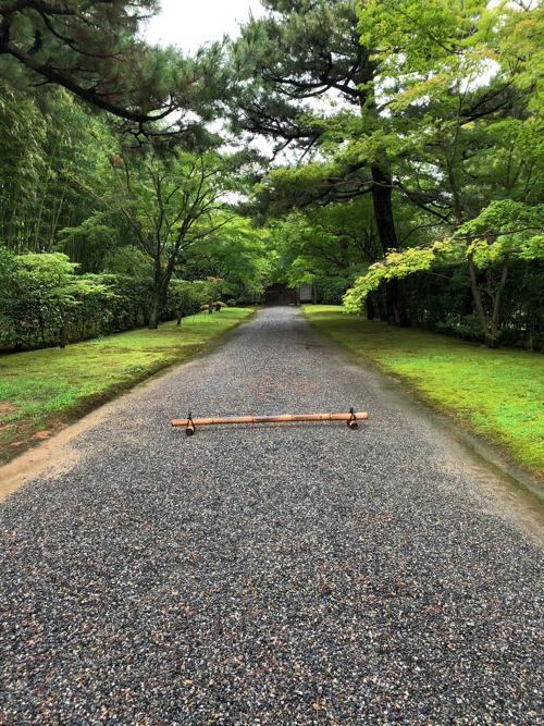 f:id:tomoko-air-tokyo:20190903145315j:plain