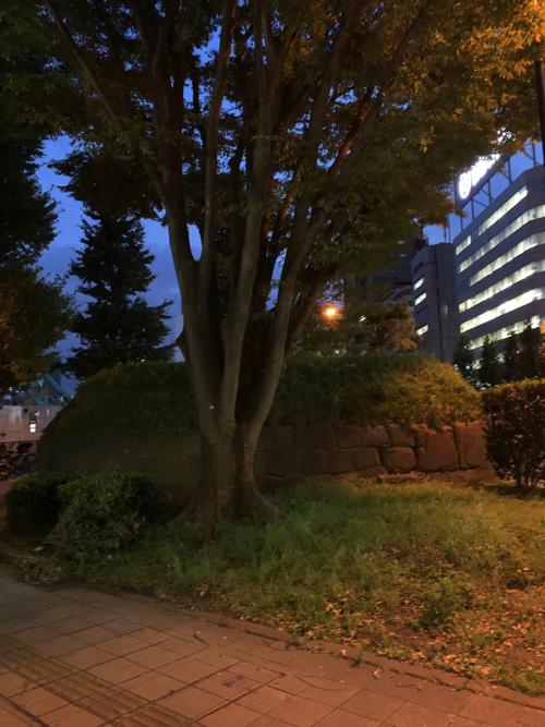 f:id:tomoko-air-tokyo:20190926203404j:plain