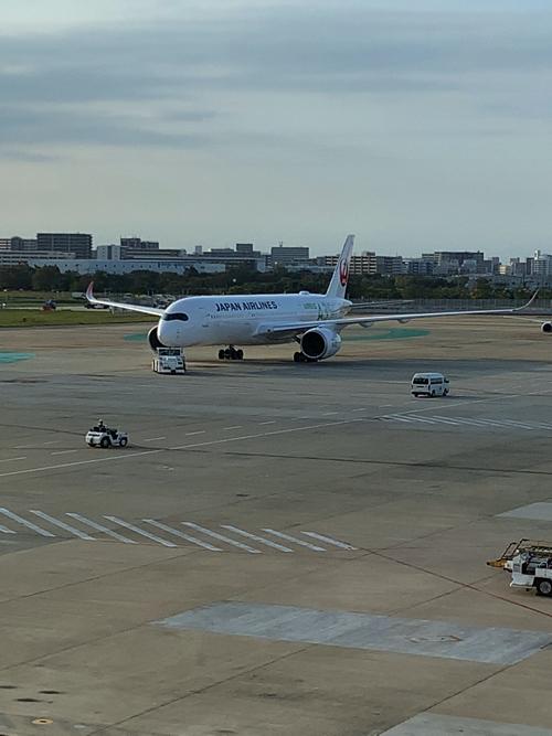f:id:tomoko-air-tokyo:20191108141256j:plain