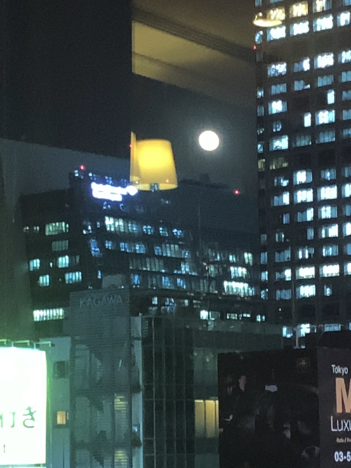 f:id:tomoko-air-tokyo:20191114141900j:plain