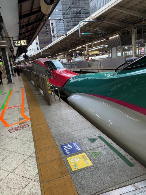 f:id:tomoko-air-tokyo:20200212154039j:plain