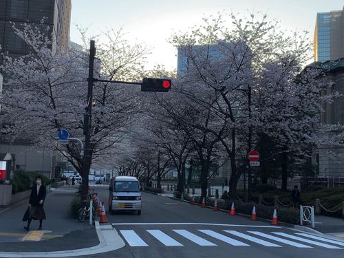 f:id:tomoko-air-tokyo:20200326104017j:plain