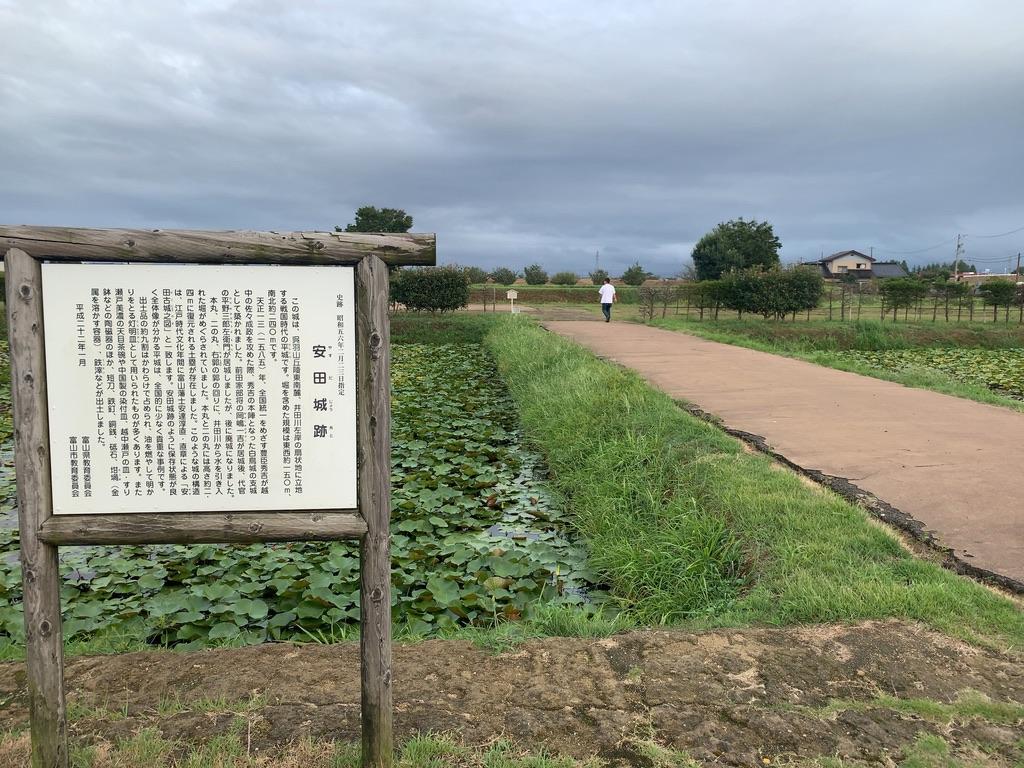 f:id:tomoko-air-tokyo:20201027112648j:plain