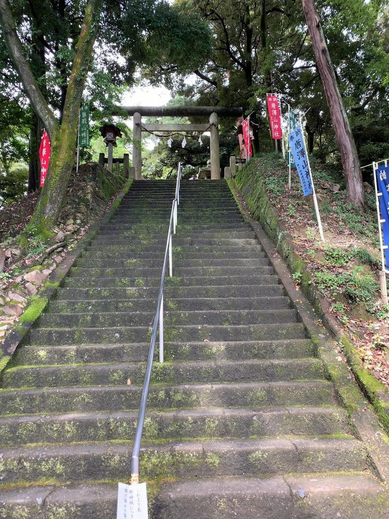 f:id:tomoko-air-tokyo:20201114180331j:plain