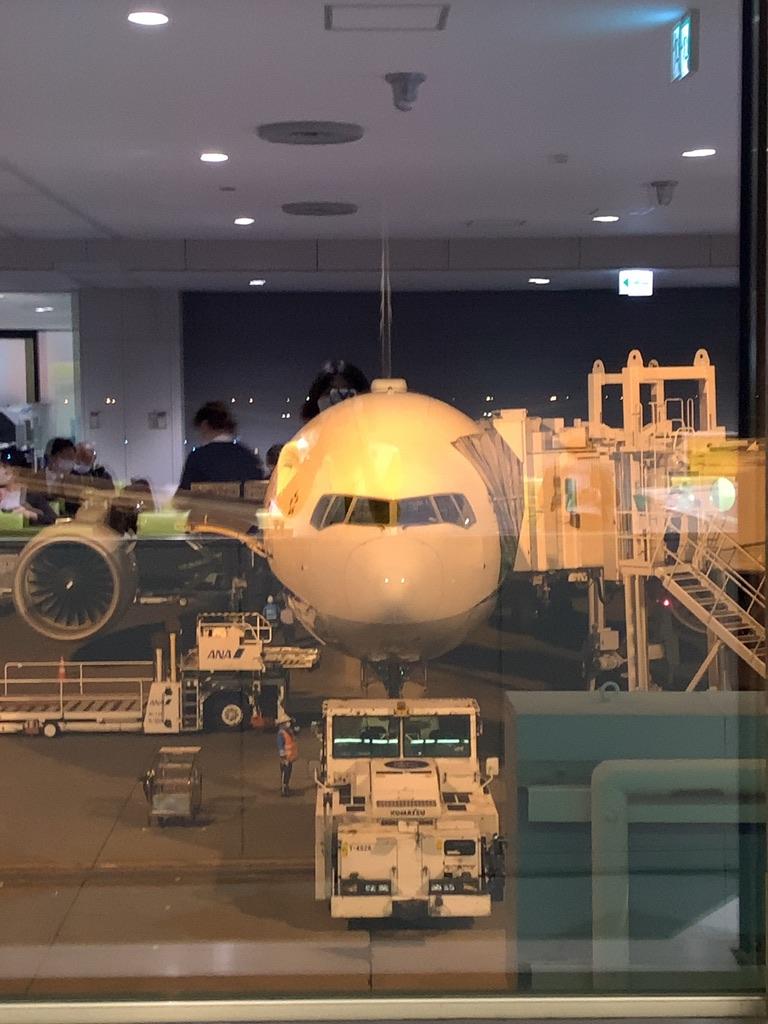 f:id:tomoko-air-tokyo:20201210101010j:plain