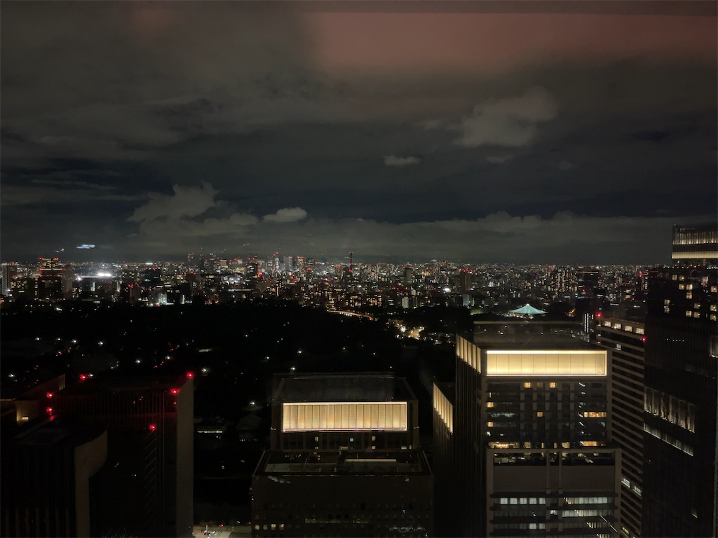 f:id:tomoko-air-tokyo:20210810001330j:image