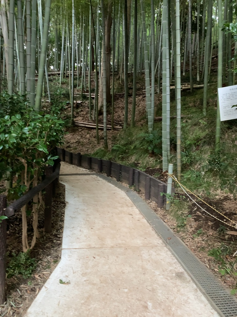 f:id:tomoko-air-tokyo:20210902191913j:plain
