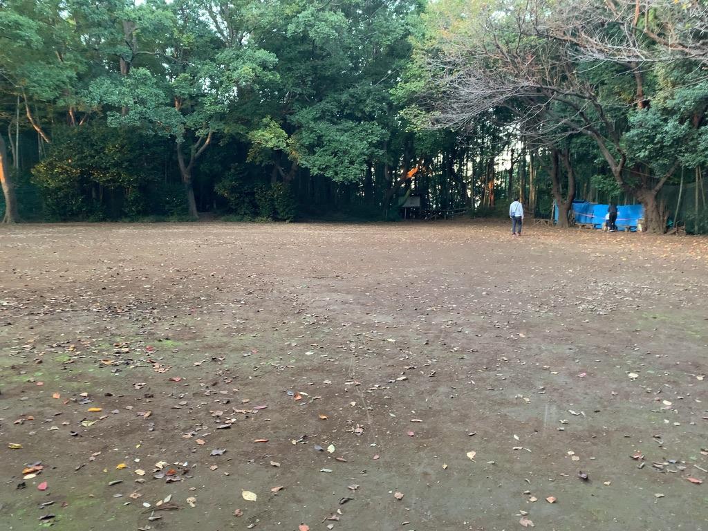 f:id:tomoko-air-tokyo:20210902192023j:plain