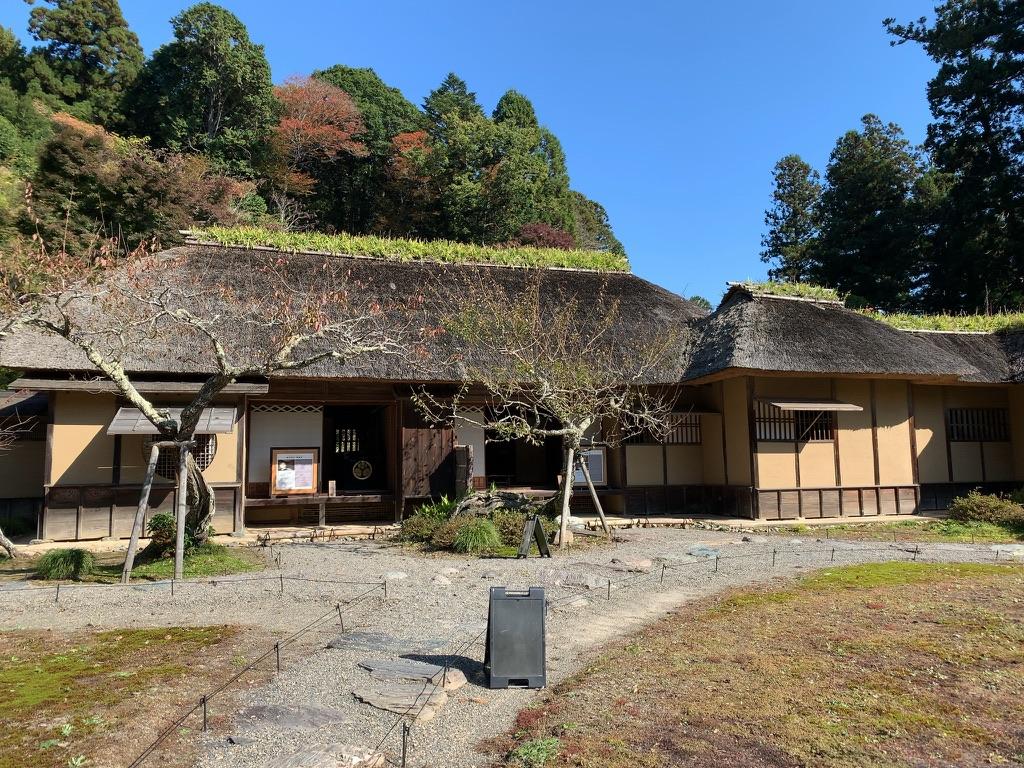 f:id:tomoko-air-tokyo:20211001164253j:plain