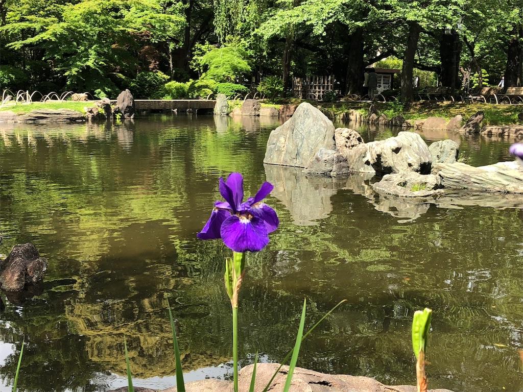 f:id:tomoko-soprano0511:20180506151656j:image