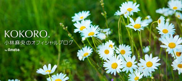 f:id:tomoko196609:20170624234005j:plain