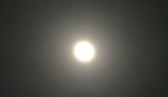 f:id:tomoko196609:20210227225242j:plain
